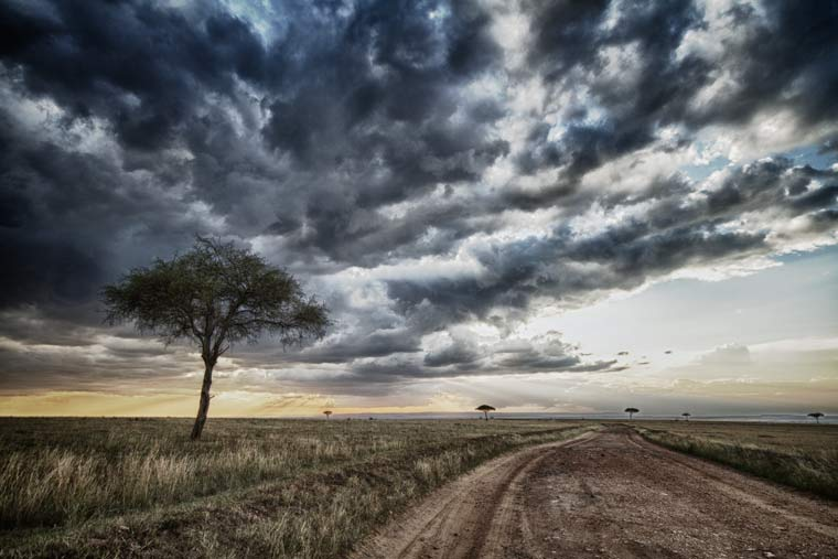 Mara road with trees and clouds